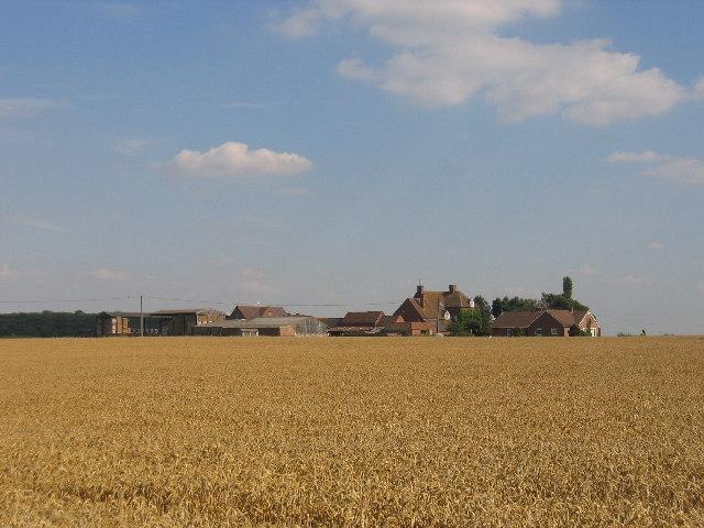 Weston Fields Farm