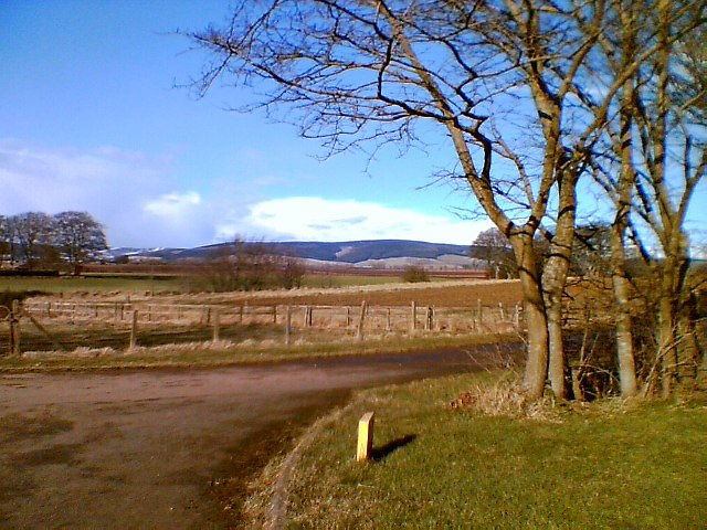 Farmland at old road - Blackiemuir
