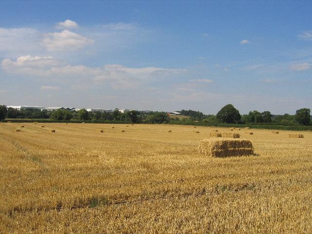 Harvesting near Bubbenhall