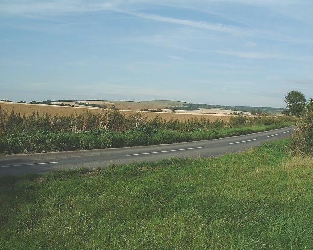 The Downs near Mid Lavant