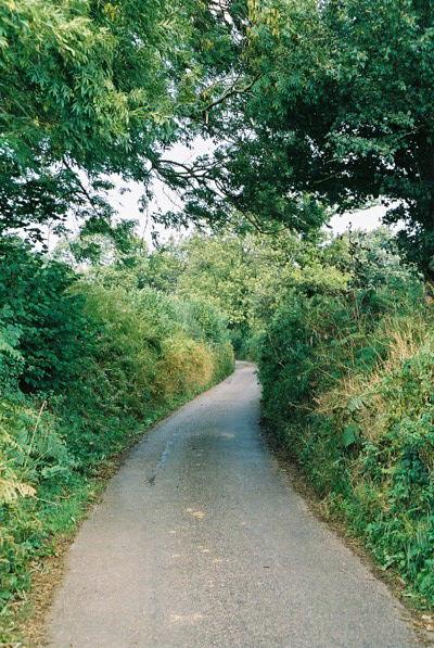 Culmstock: lane near Spiceland