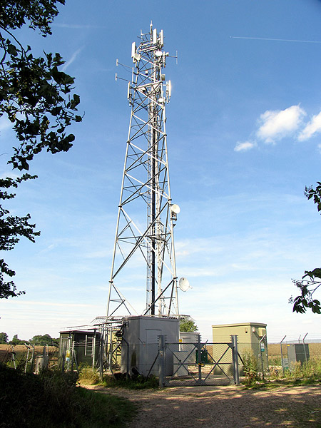 Tower at Edge Copse