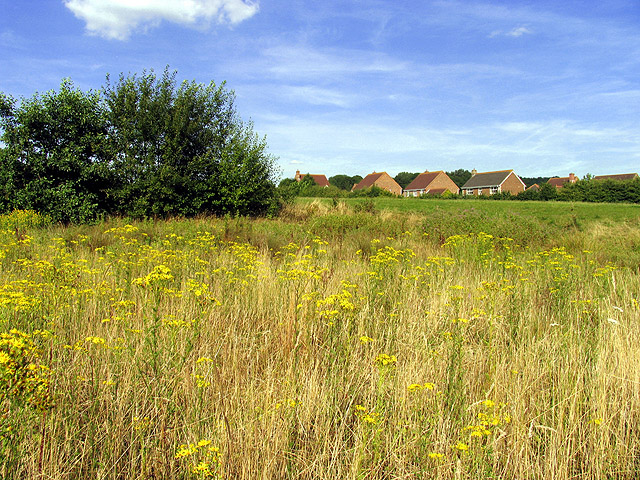 Clay Hill: Housing Estate