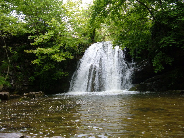 Yet another of Janets Foss