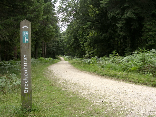 Off-road cycle route through the Park Hill Inclosure, New Forest