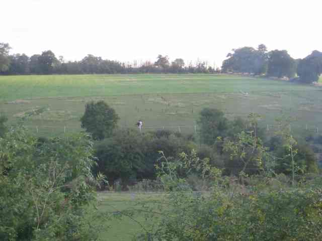 Piebald horse in the countryside from Lieut Ellis Way