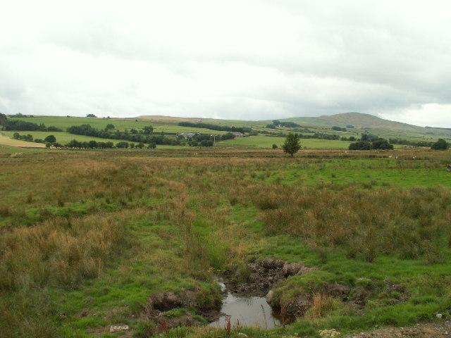 Bogland, near Glasfryn