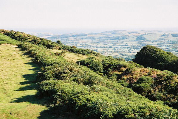 Pilsdon: Pilsdon Pen hill fort