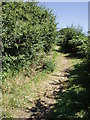 SW4937 : Green lane near Cripplesease by Sheila Russell