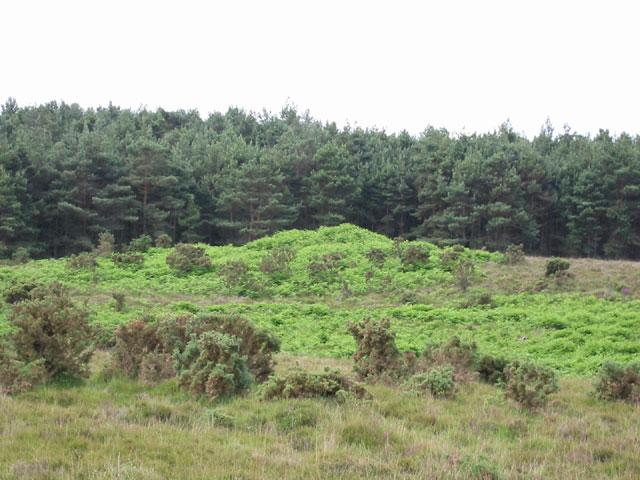 Burnt Axon burial mound