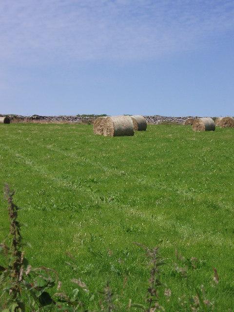 Hay bales near Kerrowe