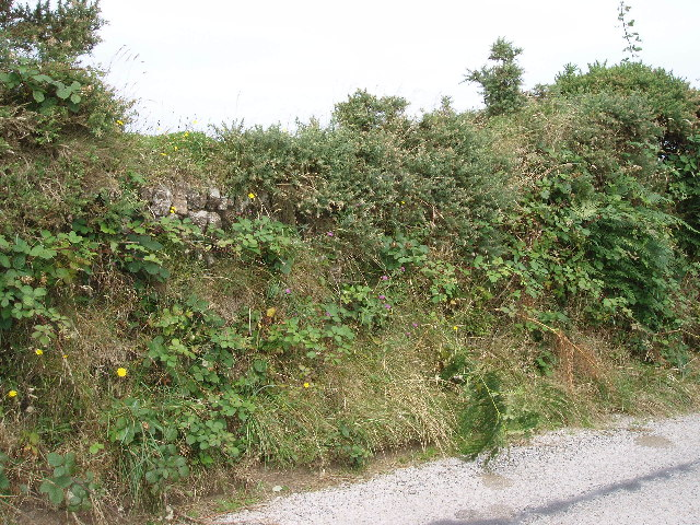 Cornish Hedge at Busveal