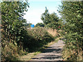 SJ4270 : A Green lane near motorway by Dennis Turner