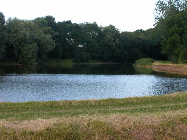 Cawston Wood Lake