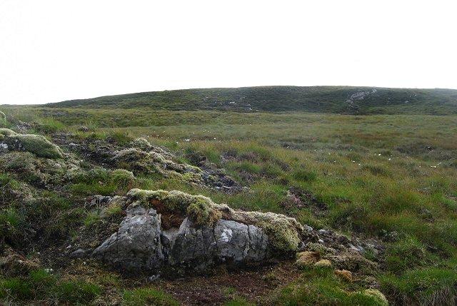Moorland, Gleann Marcasaidh