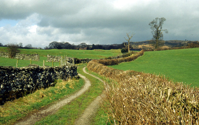 Track leading towards Crosthwaite