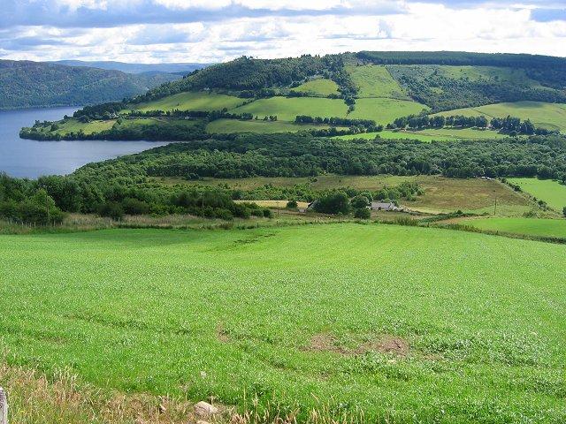 Farmland, Drumnadrochit.