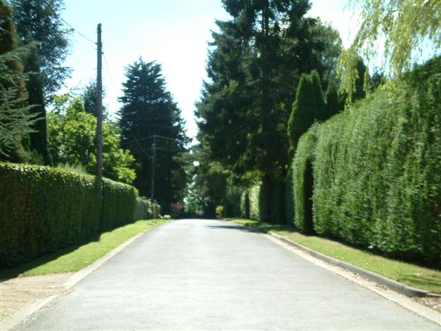 Satwell Close, Shepherd's green
