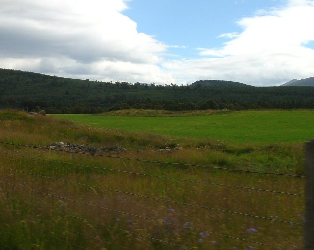 Fields Near Inver, Deeside