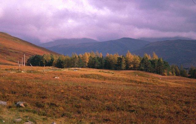 Lochs Road