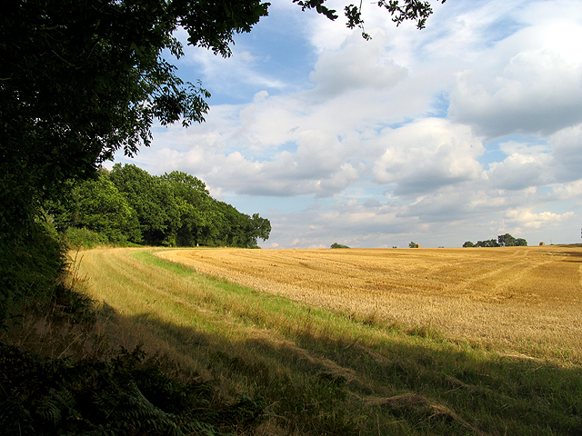 Farmland near Newtown