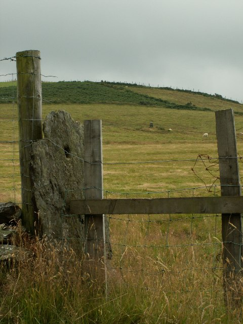 Gatepost and standing stone