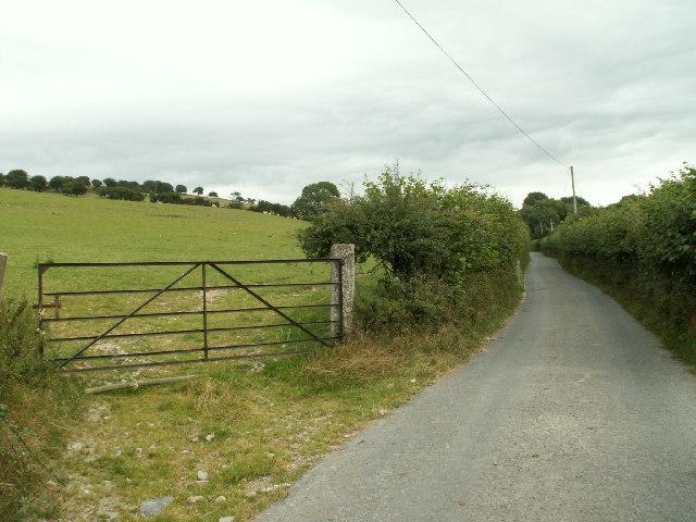 Lane and fields, Llwyniorwerth