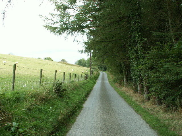 Minor road and forestry, Cefnllidiart