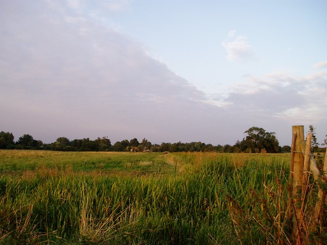 Ditton Meadows