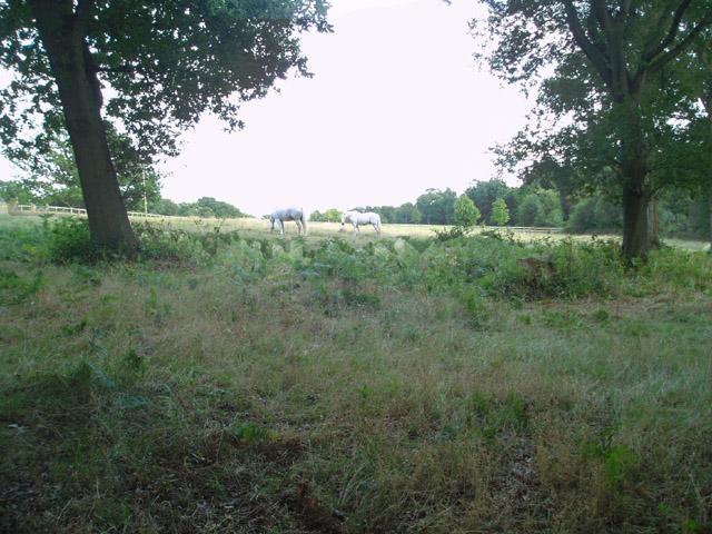 Private pasture