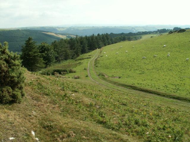Trackway, Allt Goch