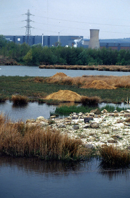 Millennium Wetlands & Trostre Works