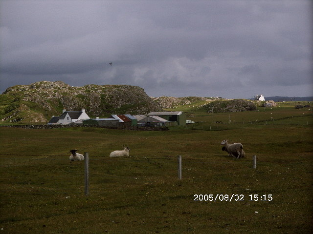 Culbuirg Farm,  on the Machair, Isle of Iona