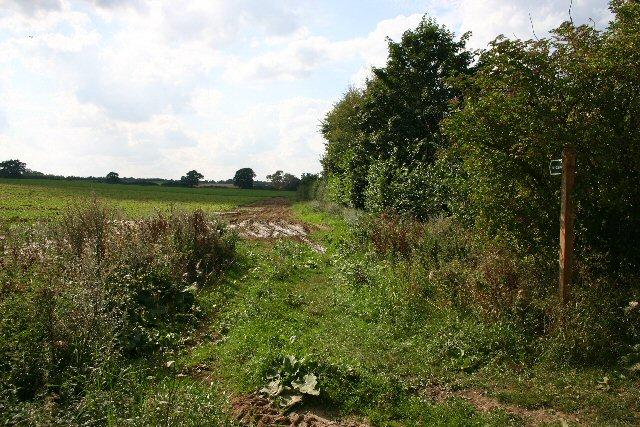Bridleway in Great Saxham