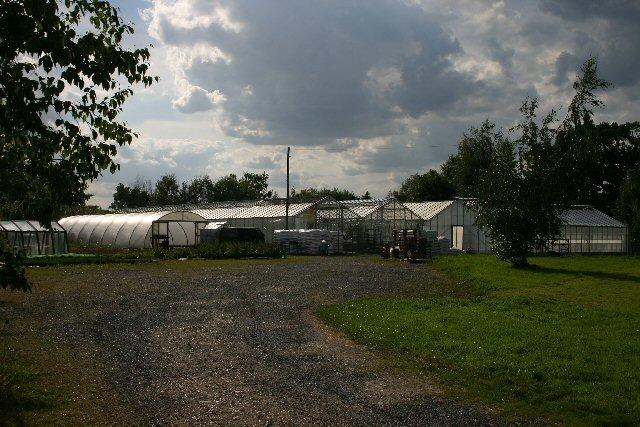 Greenhouses in Barrow, Suffolk