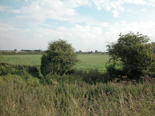 Farmland near Sealand