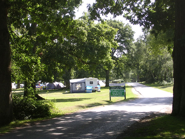 Denny Wood Caravan Site, New Forest