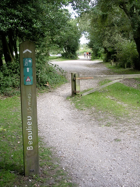 Off-road cycle route at Rans Wood, New Forest