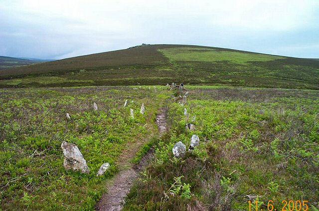 Stone row - Dartmoor