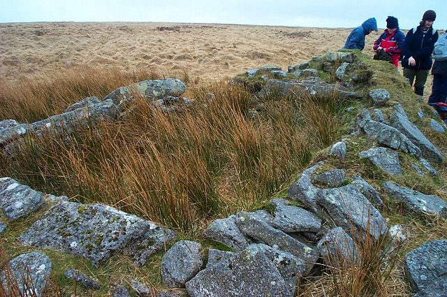 Dartmoor Ruin