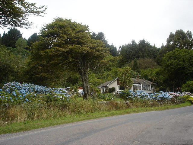 Fantastic Garden, between Saddell and Peninver, Kintyre