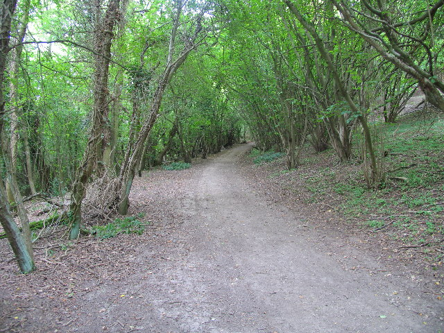 Footpath, Charlton Kings Common