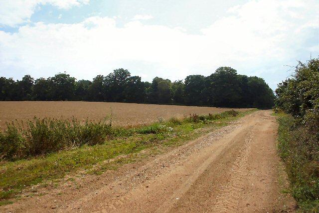 Lackford Lane
