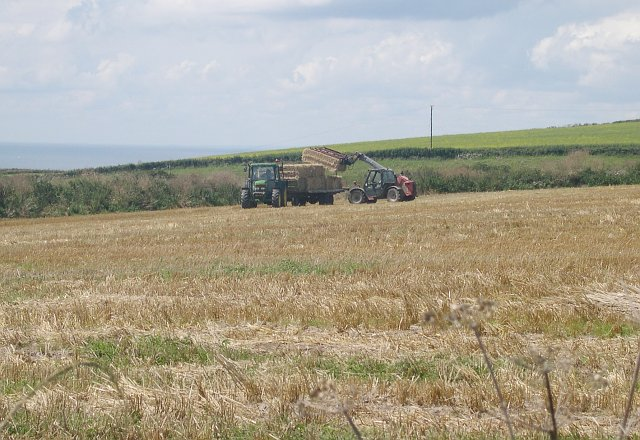 Bringing in the Bales.