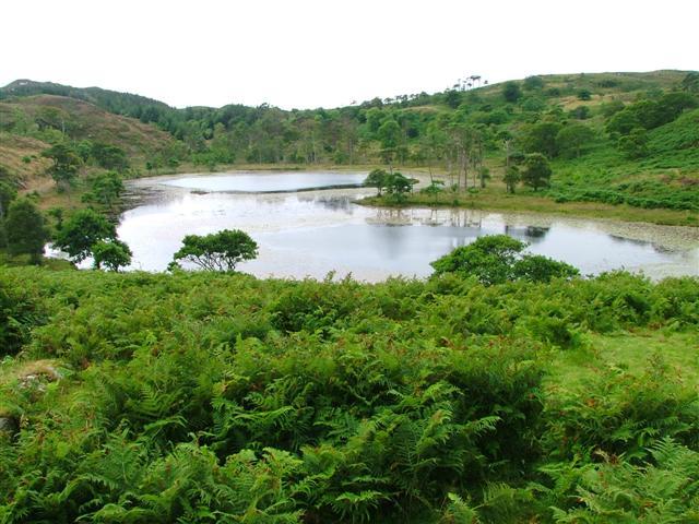 Loch a'Mhuirlinn