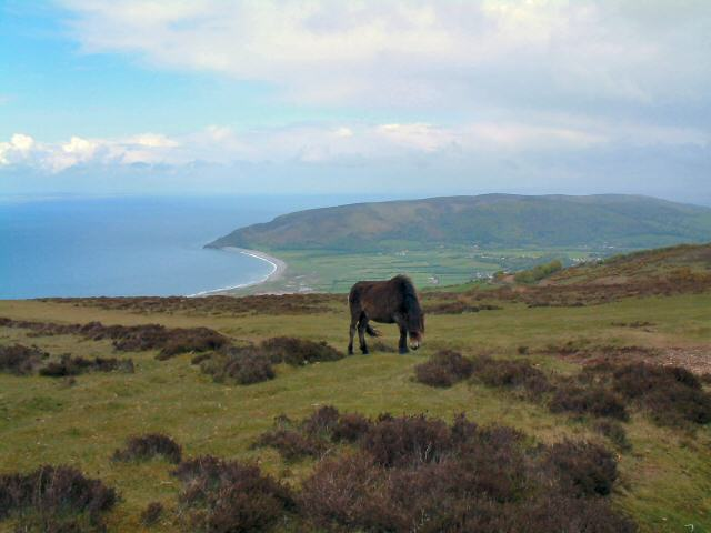 View from near Whit Stones above Porlock