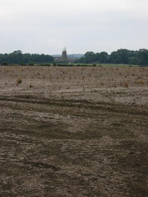 Harvested field near Wymondham