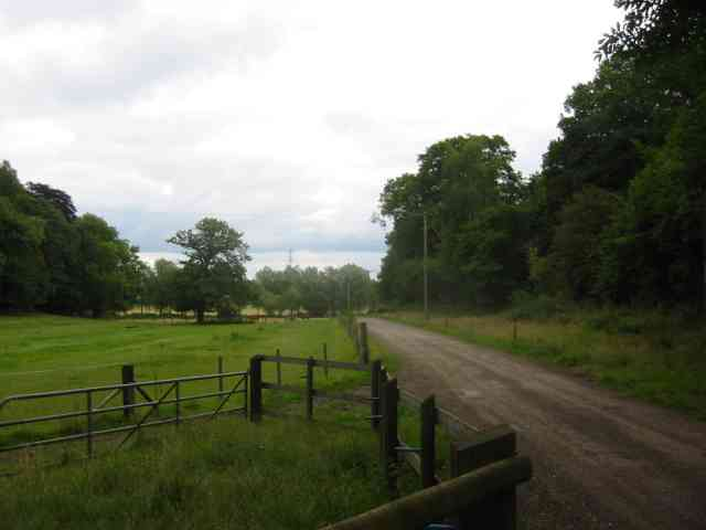 Entrance road to Little Munden Farm