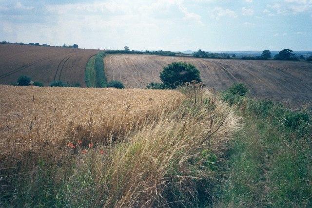 Bridleway near Shorthampton