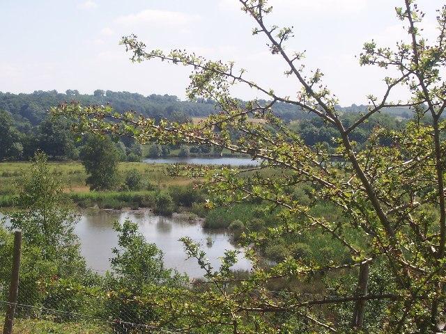 Nature Reserve Masham